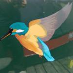Kingfisher Narrowboat