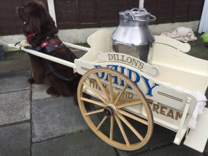 Hand Painted Doggy Cart